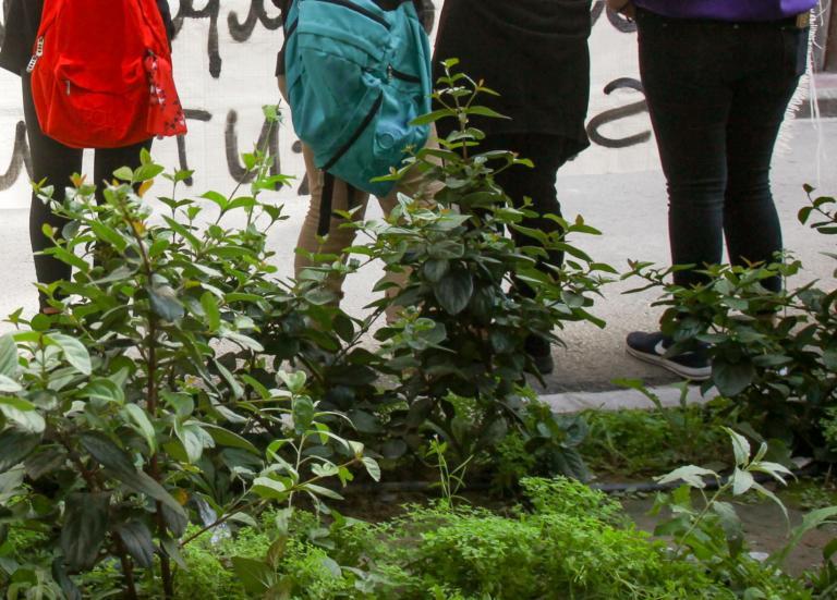 """Καιρός: Οι υδροστρόβιλοι και οι ανεμοστρόβιλοι κάνουν """"πάρτι"""" στην Ηλεία"""