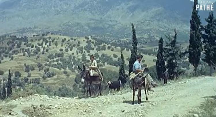 Η μοναδική Κρήτη του 1964 – Βίντεο γεμάτο νοσταλγία