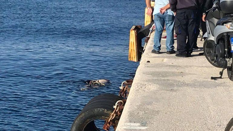 Κρητικός ο άνδρας που βρήκε τραγικό θάνατο στο λιμάνι της Ρόδου