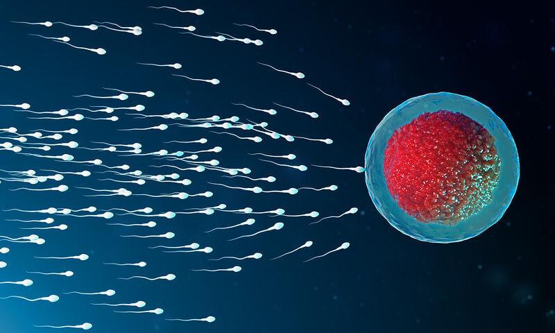 Τα 5 βήματα για υγιές σπέρμα (εικόνες)
