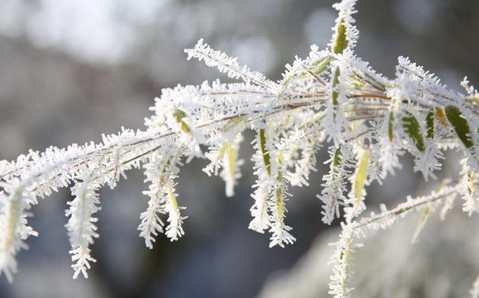 """Ο παγετός """"πάγωσε"""" την Κρήτη – Ως και -4,6 βαθμούς το θερμόμετρο"""