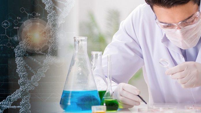 Ανακαλύφθηκε τυχαία, κύτταρο-φονιάς του καρκίνου
