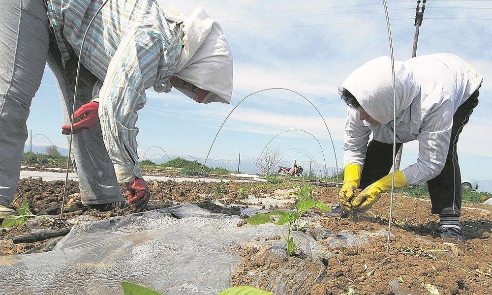 Ξεπουλιούνται τα «κόκκινα» δάνεια των αγροτών