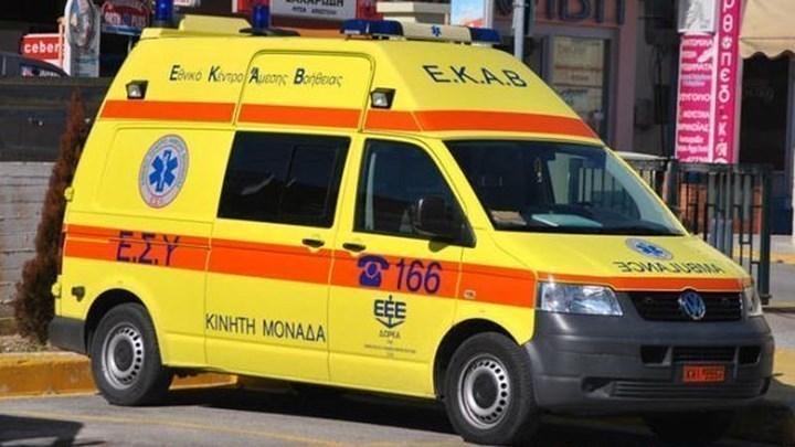 Μαγνησία: Σοκ προκαλεί η ιατροδικαστική έκθεση – Από δαγκώματα σκύλου ο θάνατος της γυναίκας