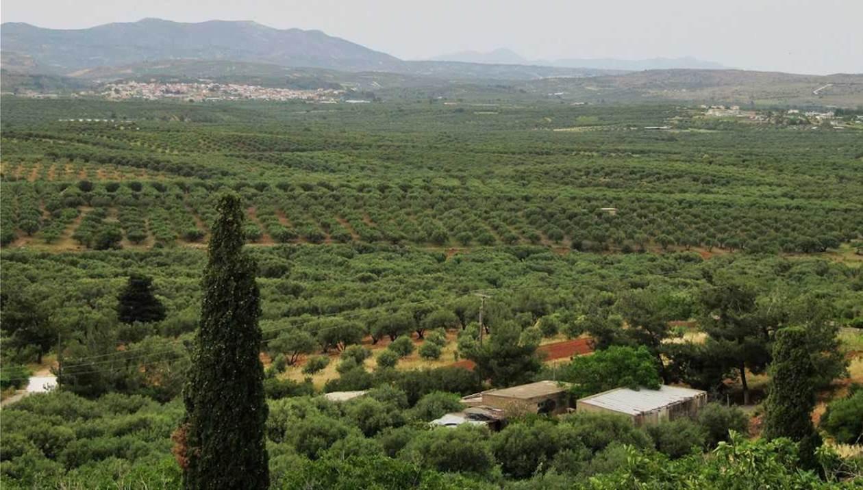 Αεροδρόμιο Καστελίου: Στις 8/2 ο Μητσοτάκης στην Κρήτη – Ανάλογο εργοτάξιο δεν έχει «ξαναδεί» η Κρήτη