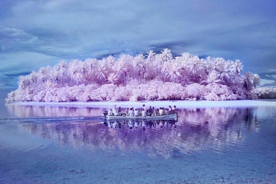 Το Νησί της Αχρωματοψίας: Εκεί όπου η θάλασσα είναι γκρι και η ξηρά ροζ