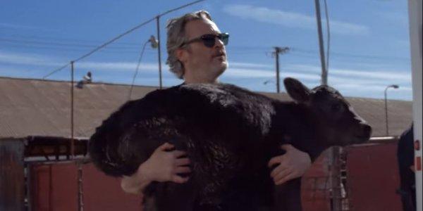 Ο Χοακίν Φίνιξ σώζει αγελάδες από τη σφαγή μία ημέρα μετά τα Όσκαρ