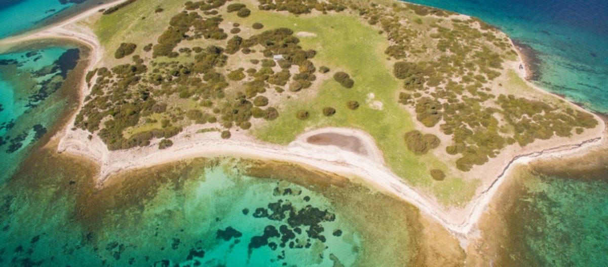 «Κλειστή δομή για αλλοδαπούς σε ακατοίκητο νησί» – Η τοποθεσία που πρότεινε ο περιφερειάρχης Β.Αιγαίου