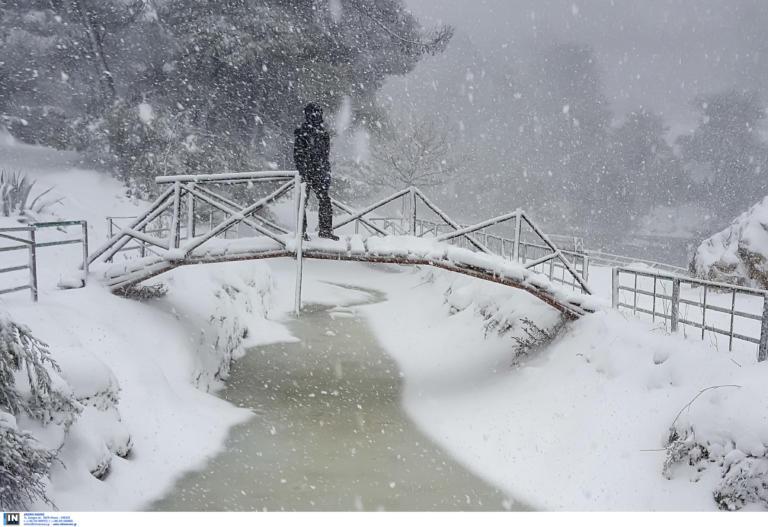 Καιρός: Ξεκίνησε η επέλαση του χιονιά! Απότομη βουτιά ο υδράργυρος
