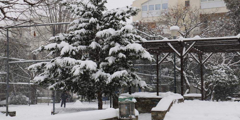 Στα λευκά «ξύπνησε» η Δυτική Μακεδονία – Κλειστά τα σχολεία στη Φλώρινα
