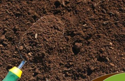 Γιατί το χώμα είναι καφέ