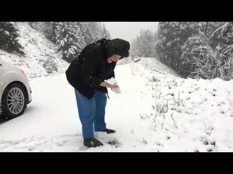 Γιαγιά 101 χρονών ζητά από τον γιο της να σταματήσει το αυτοκίνητο για να παίξει με το χιόνι