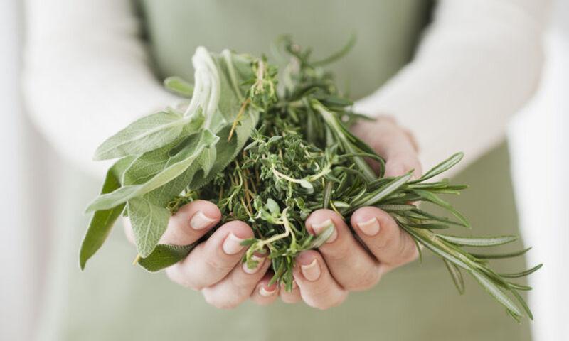 5 βότανα που συμβάλλουν στην καταπολέμηση του στρες (εικόνες)