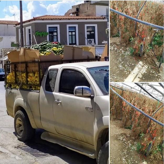 Οι αγρότες της Κρήτης σε απόγνωση! Η εικόνα που τα λέει όλα…