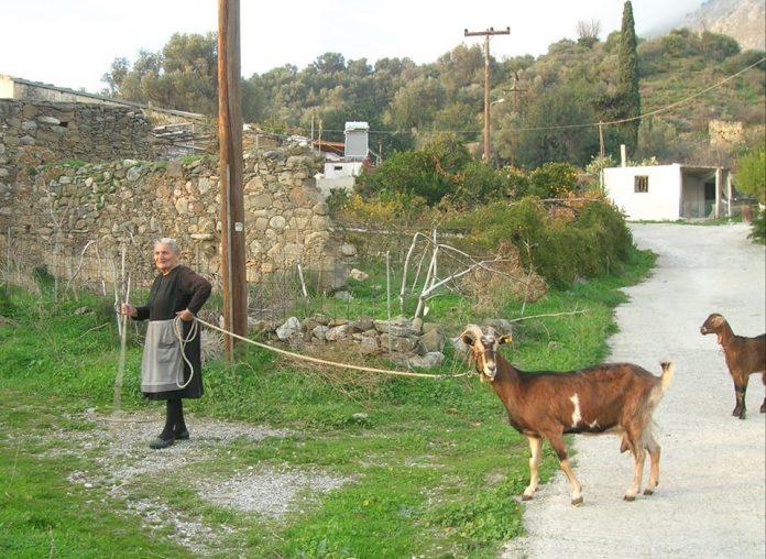 Μια εικόνα χίλιες λέξεις! Η άλλη Κρήτη, η χωρίς βιασύνη καθημερινότητα και οι ρυθμοί της υπαίθρου… (pics)