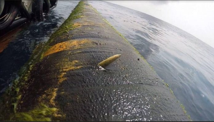 Τεράστιος ξιφίας «κάρφωσε» ένα από τα μεγαλύτερα δεξαμενόπλοια στον κόσμο – To ελληνικό τάνκερ «Ταύρος» (pics)