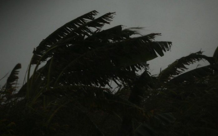 Κρήτη: Θυελλώδεις νότιοι άνεμοι προκάλεσαν πολλά προβλήματα (Pic)