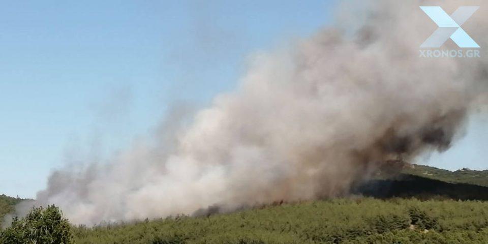 Σε εξέλιξη μεγάλη φωτιά στη Ροδόπη – Εντολή εκκένωσης οικισμού