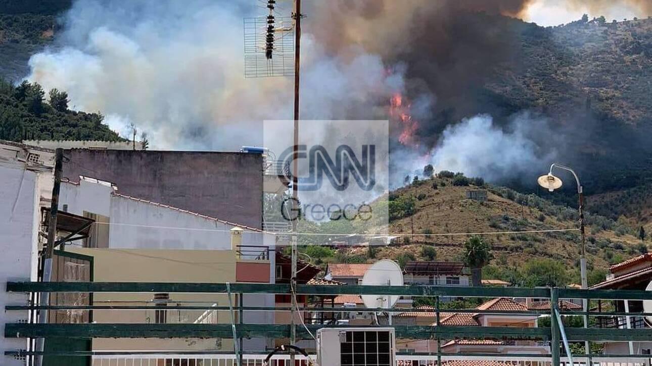 Φωτιά στην Αταλάντη – Κοντά σε σπίτια οι φλόγες