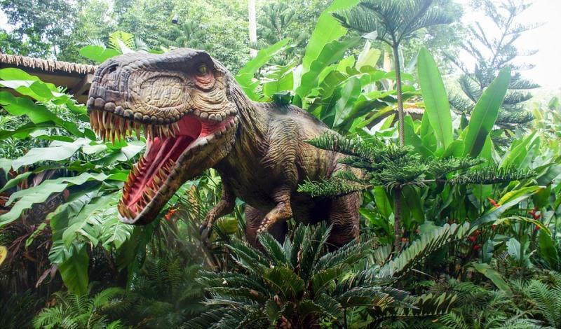 Ανακαλύφθηκε νέο είδος δεινοσαύρου – Συγγενικό του Τυραννόσαυρου