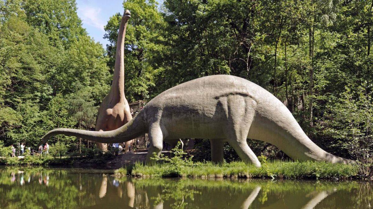 Και οι δεινόσαυροι είχαν καρκίνο, αποκαλύπτει επιστημονικό εύρημα