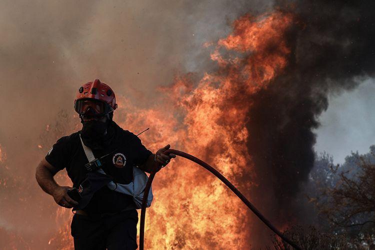Πυρκαγιά σε δασική έκταση στη Μεσσηνία