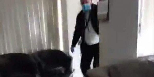 Κορονοϊός: Καλούσε σε «σπάσιμο» της καραντίνας και εισέβαλε στο σπίτι του η Αστυνομία
