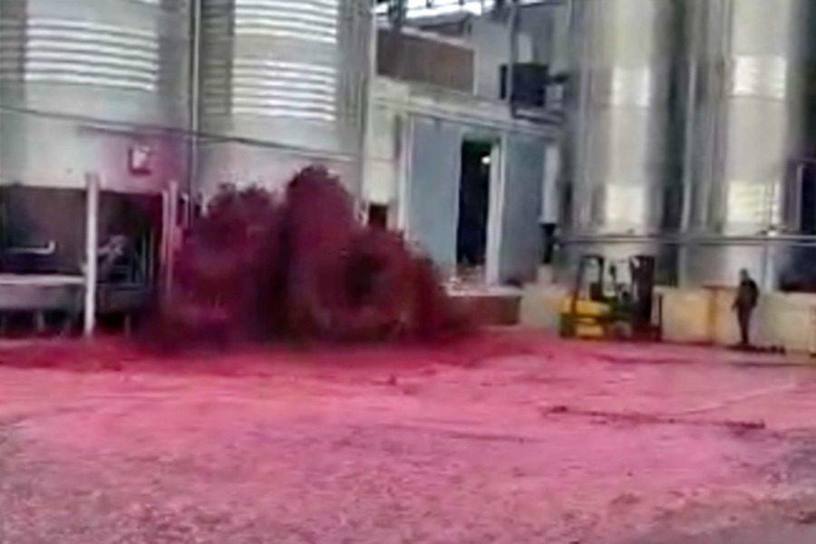 Ισπανία: 50.000 λίτρα κόκκινου κρασιού χύθηκαν λόγω βλάβης σε δεξαμενή