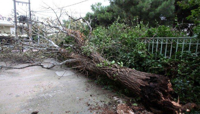 Προβλήματα από τους ισχυρούς νοτιάδες στην Κρήτη – Διακοπές ρεύματος σε διάφορα σημεία