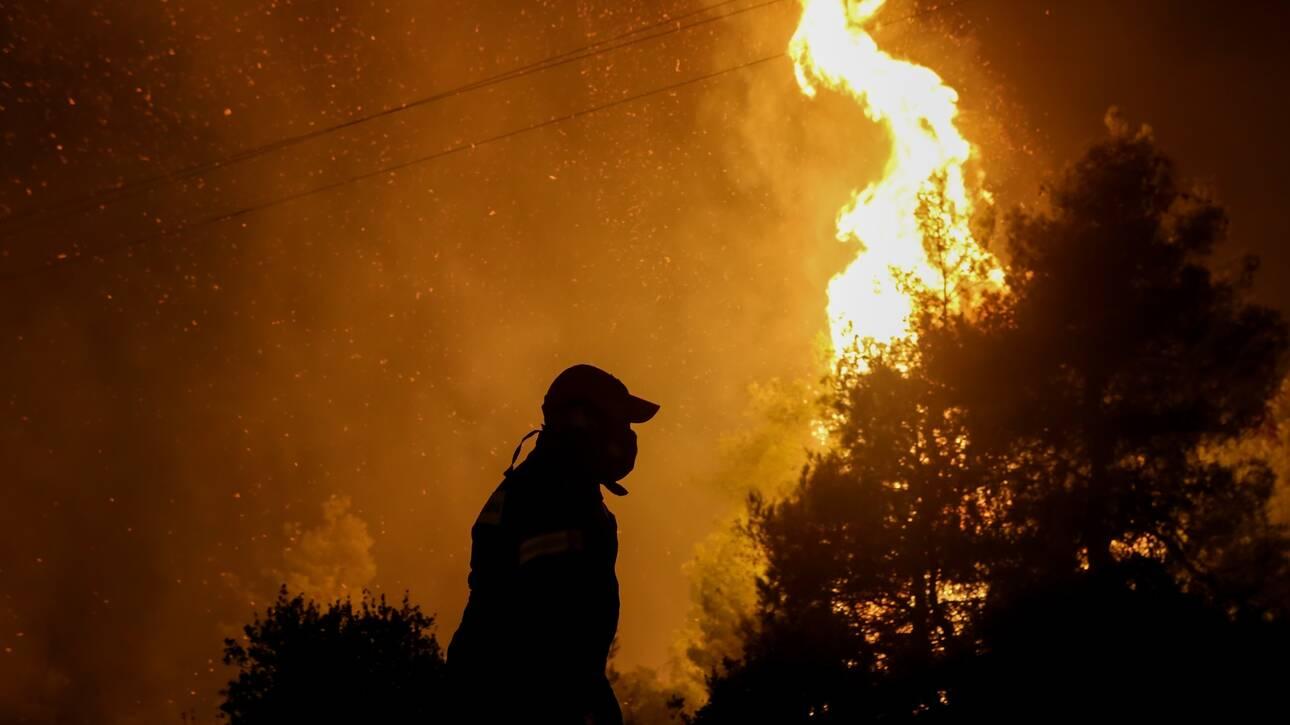 Δεύτερη νύχτα συναγερμού στον Έβρο: Αναζωπυρώθηκε η φωτιά - Καίγονται χιλιάδες στρέμματα