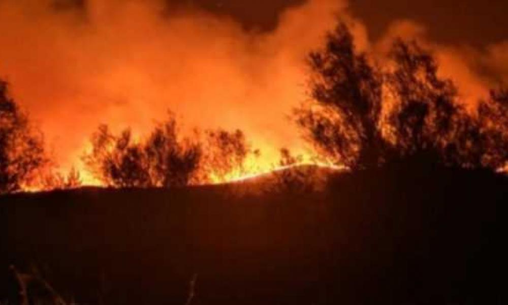 Μαίνεται η πυρκαγιά στον Έβρο – Απειλείται το δάσος της Δαδιάς