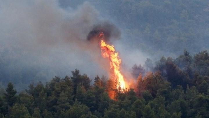 Μεγάλη φωτιά ανάμεσα σε Σπάτα και Αρτέμιδα - ΤΩΡΑ