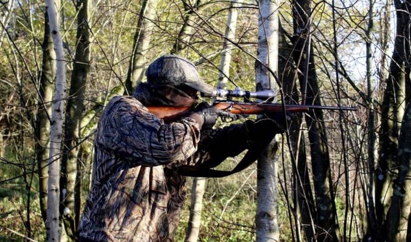 Χαλκιδική: Πανικός σε παράνομο κυνήγι! Στο νοσοκομείο 17χρονος που σωριάστηκε αιμόφυρτος