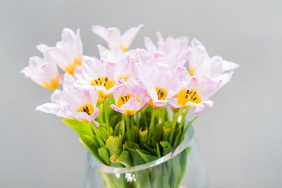 Έτσι θα αντέξουν περισσότερες μέρες φρέσκα τα λουλούδια στο βάζο
