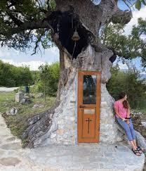 Πού στην Ελλάδα βρίσκεται η μοναδική δεντροκκλησιά, μια εκκλησία μέσα σε ένα δέντρο