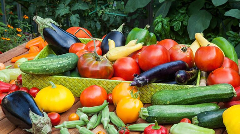 Ενίσχυση των παραγωγών της Κρήτης – Οι τιμές ανά στρέμμα και καλλιέργεια