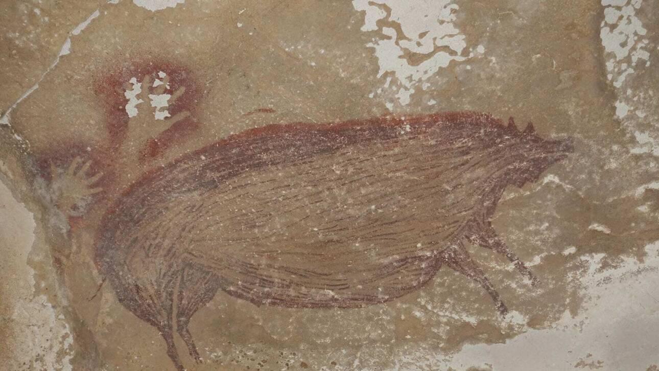 Ινδονησία: Ανακαλύφθηκε η αρχαιότερη σπηλαιογραφία ζώου – Δημιουργήθηκε πριν από 45.000 χρόνια