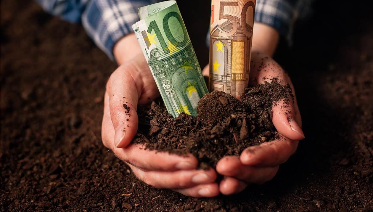 ΕΛΓΑ: Αύριο οι αποζημιώσεις για «Ιανό», φυτικό και ζωικό κεφάλαιο – Τα ποσά για την Κρήτη
