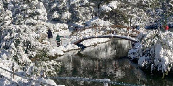 Κακοκαιρία Λέανδρος: Το 30% της χώρας καλύφθηκε με χιόνι