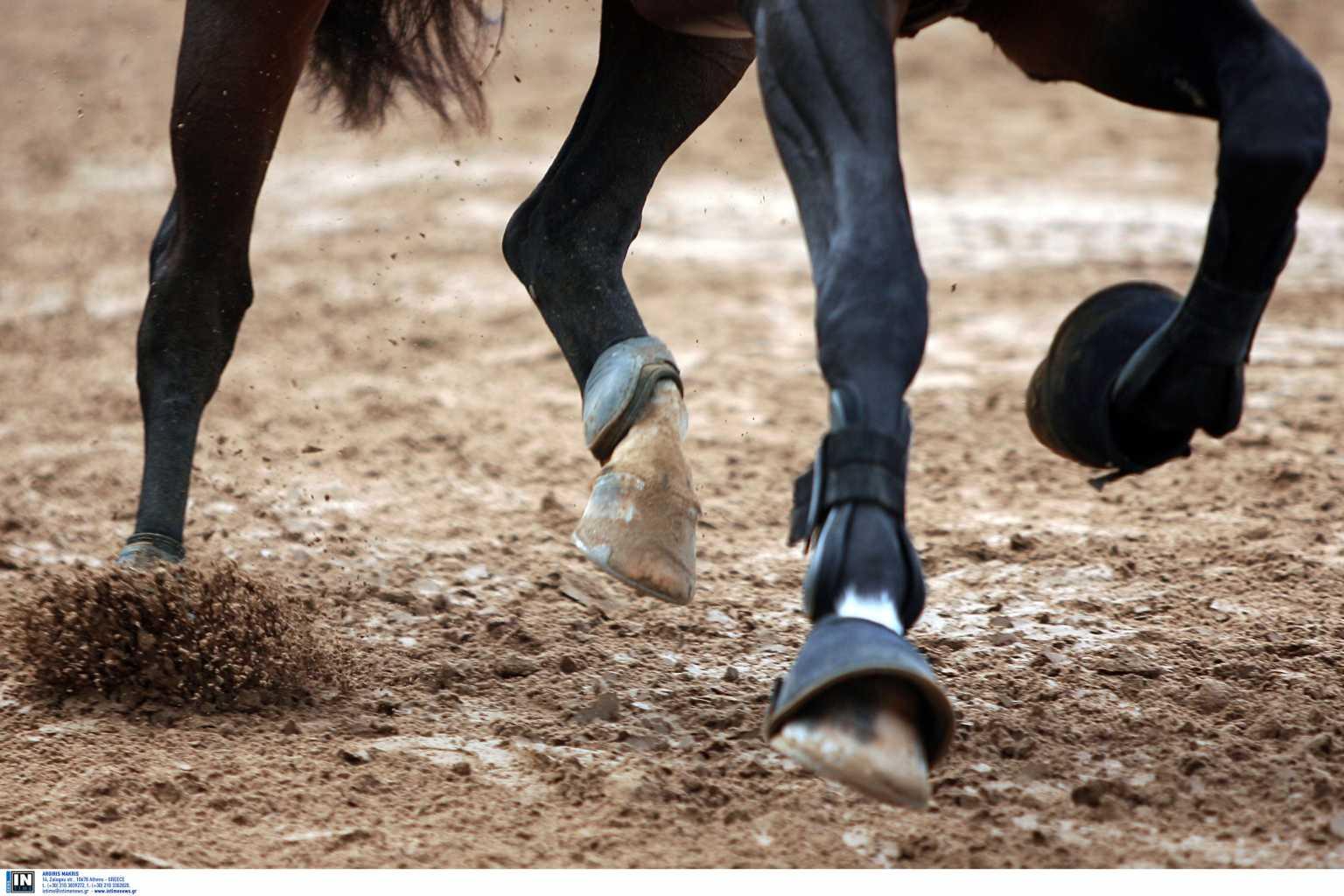 Απόπειρα βιασμού 5χρονης: «Εγώ ακινητοποίησα τον δράστη», δηλώνει ο ιδιοκτήτης της σχολής ιππασίας
