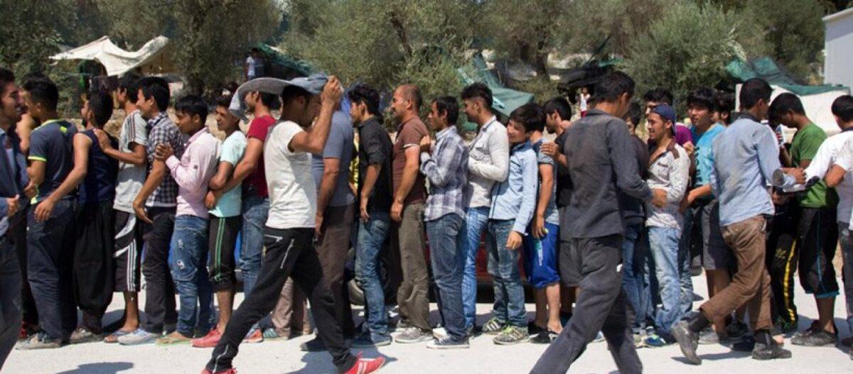 Στα κάγκελα οι κάτοικοι της Λέσβου: Παράνομοι μετανάστες κυκλοφορούν οπλισμένοι! – Σφάζουν και κλέβουν ζώα (βίντεο)