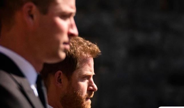 Ειδικοί διάβασαν τα χείλη των Χάρι και Ουίλιαμ στην κηδεία του πρίγκιπα Φίλιππου – Τι είπαν τα αδέρφια
