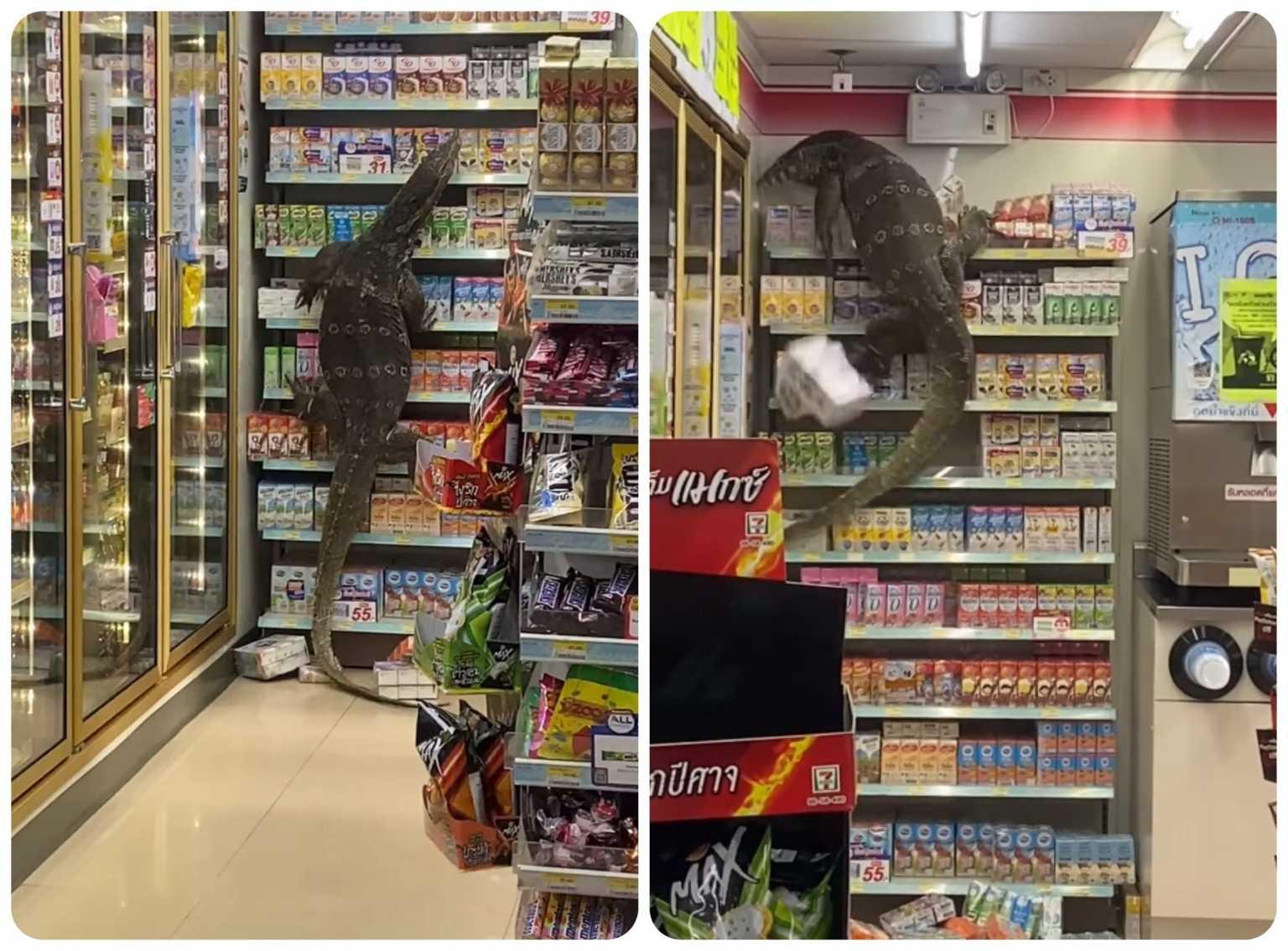 Ανατριχίλα με τεράστια σαύρα μέσα σε σούπερ μάρκετ στην Ταϊλάνδη (video)
