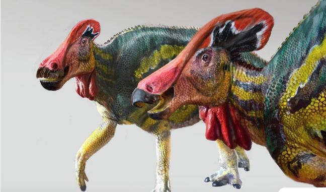 Tlatolophus Galorum: Αναγνωρίστηκε νέο είδος δεινοσαύρων ηλικίας 72 εκατομμυρίων ετών