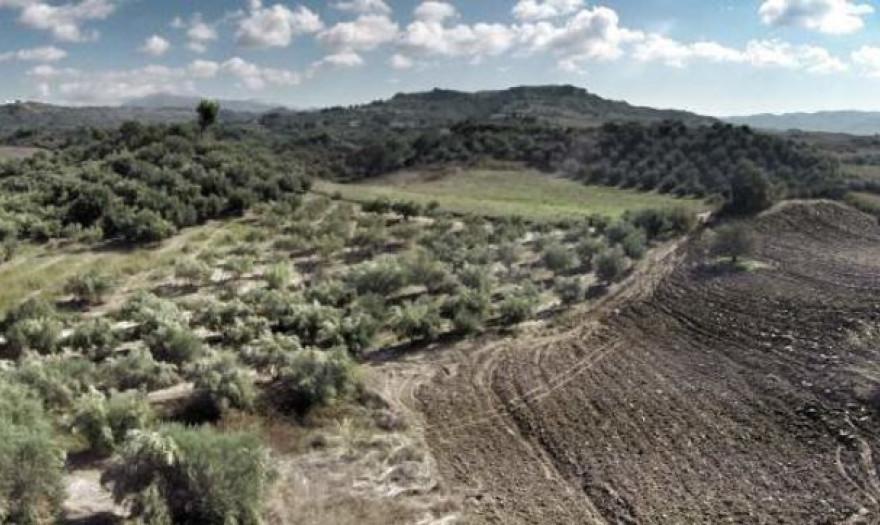 Δασικοί χάρτες: Δεν αλλάζουν οι αγροτικές επιδοτήσεις