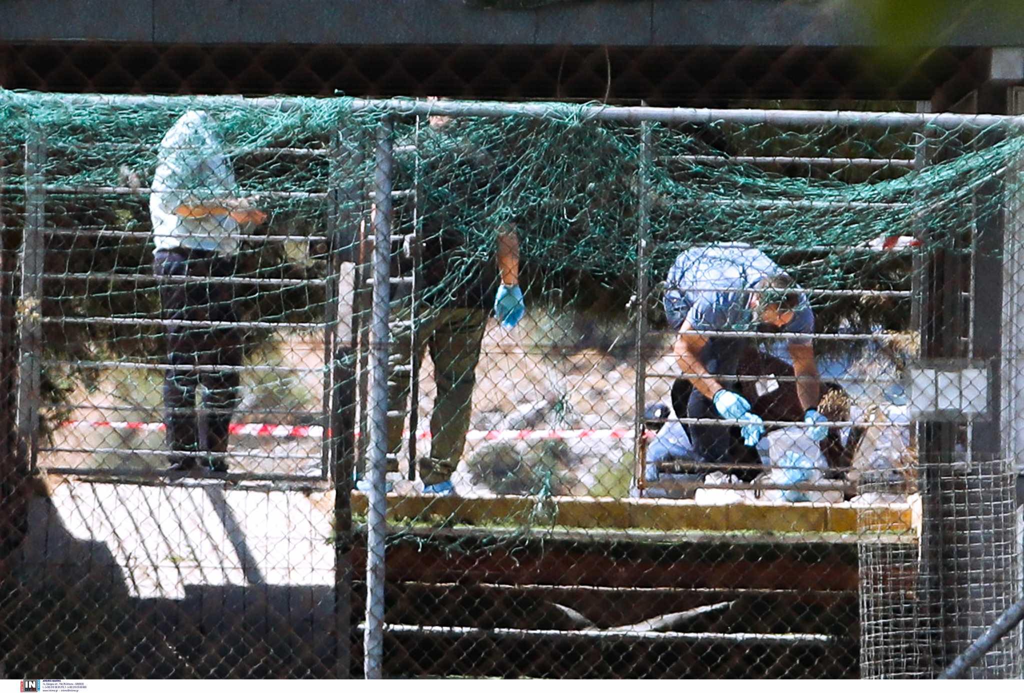 Βάρη: Εκτέλεσαν εν ψυχρώ τον γνωστό πυγμάχο Τάσο Μπερδέση
