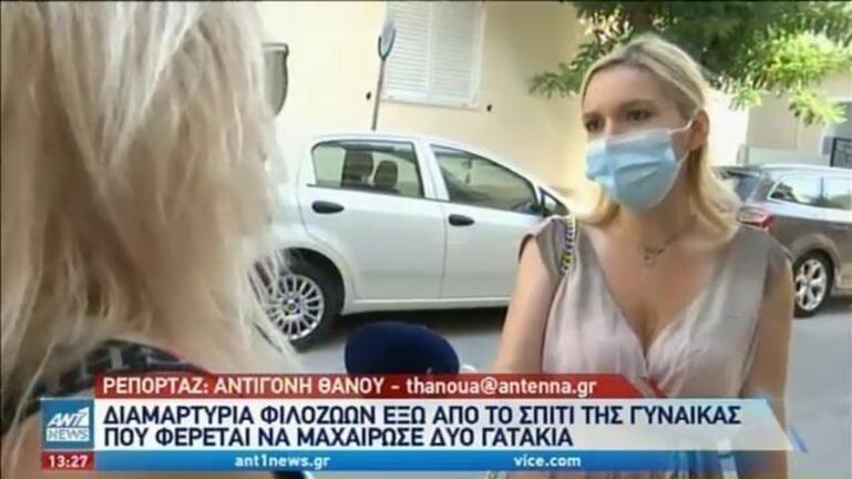 Γυναίκα μαχαίρωσε νεογέννητα γατάκια