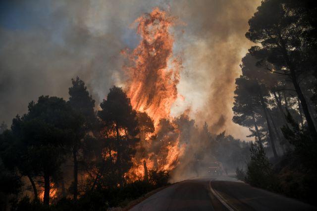 Οδυσσέας Αθανασίου: «Πράσινη» ενέργεια θα καταναλώνει το Ελληνικό