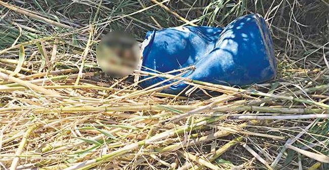 Πτώμα σε βαρέλι στο Ρέθυμνο: Το στοιχείο «κλειδί» που εξετάζουν οι αρχές – Φωτογραφία ντοκουμέντο από το σημείο