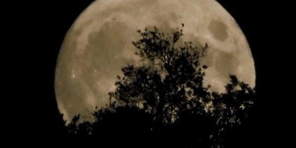 Πανσέληνος Ιουλίου: Κορυφώνεται το «Φεγγάρι του Ελαφιού» – Eντυπωσιακές εικόνες